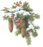 obrázek k aktualitě Pracovní doba v období vánočních svátků avdobě inventury po Novém roce